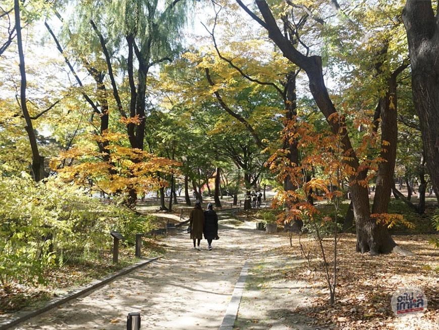 สวน ในกรุงโซล