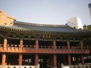 หอระฆัง โพชินกัก ปีใหม่เกาหลี