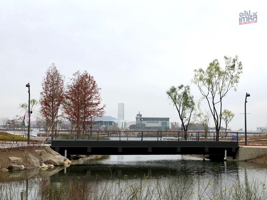 Seoul Botanic Park สวน พฤกษศาสตร์ โซล