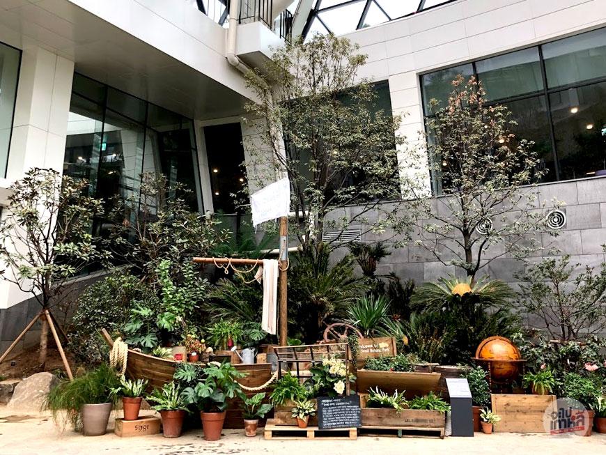 สวนพฤกษศาสตร์โซล โซน Tropical