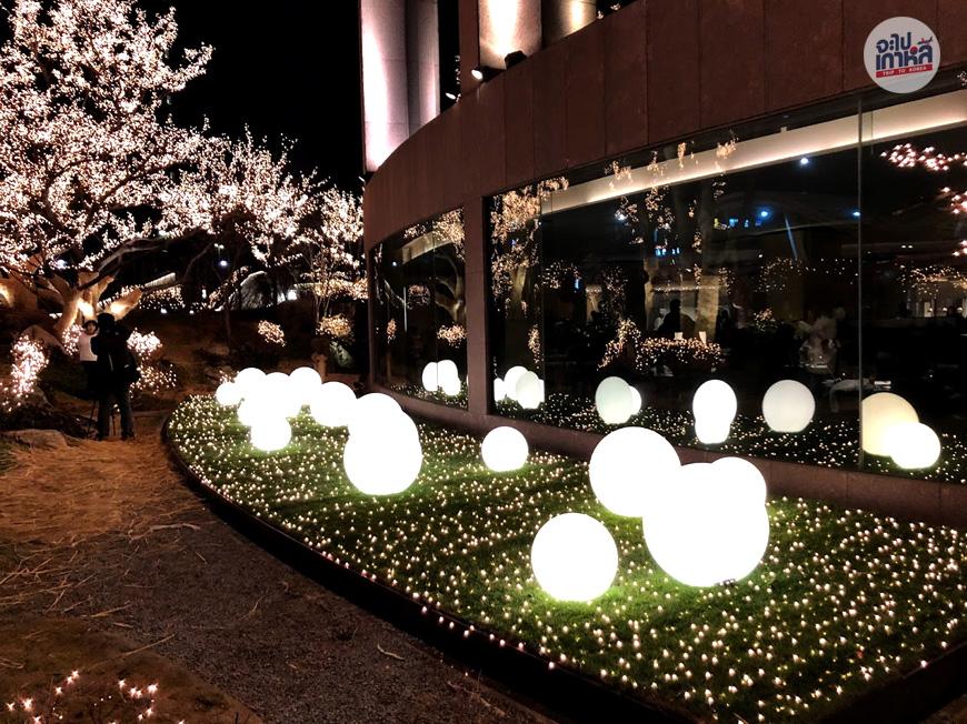 ไฟปีใหม่เกาหลี โซล