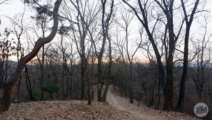 Seooreung Tombs Mountain View